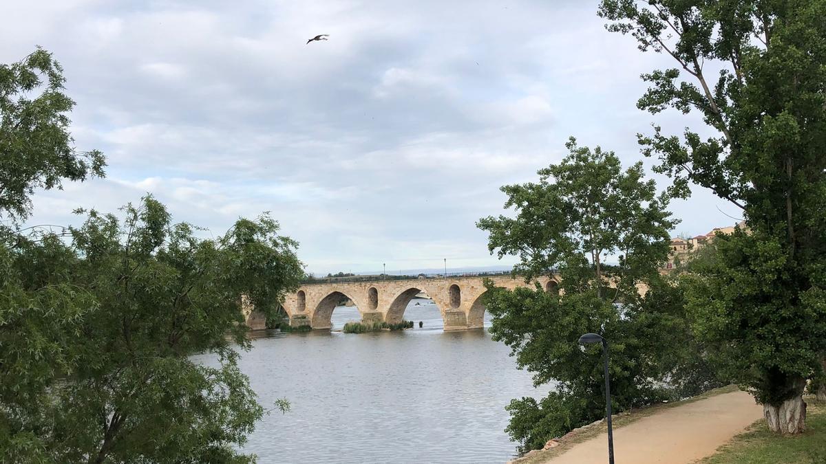 El río Duero a su paso por Zamora, esta mañana.