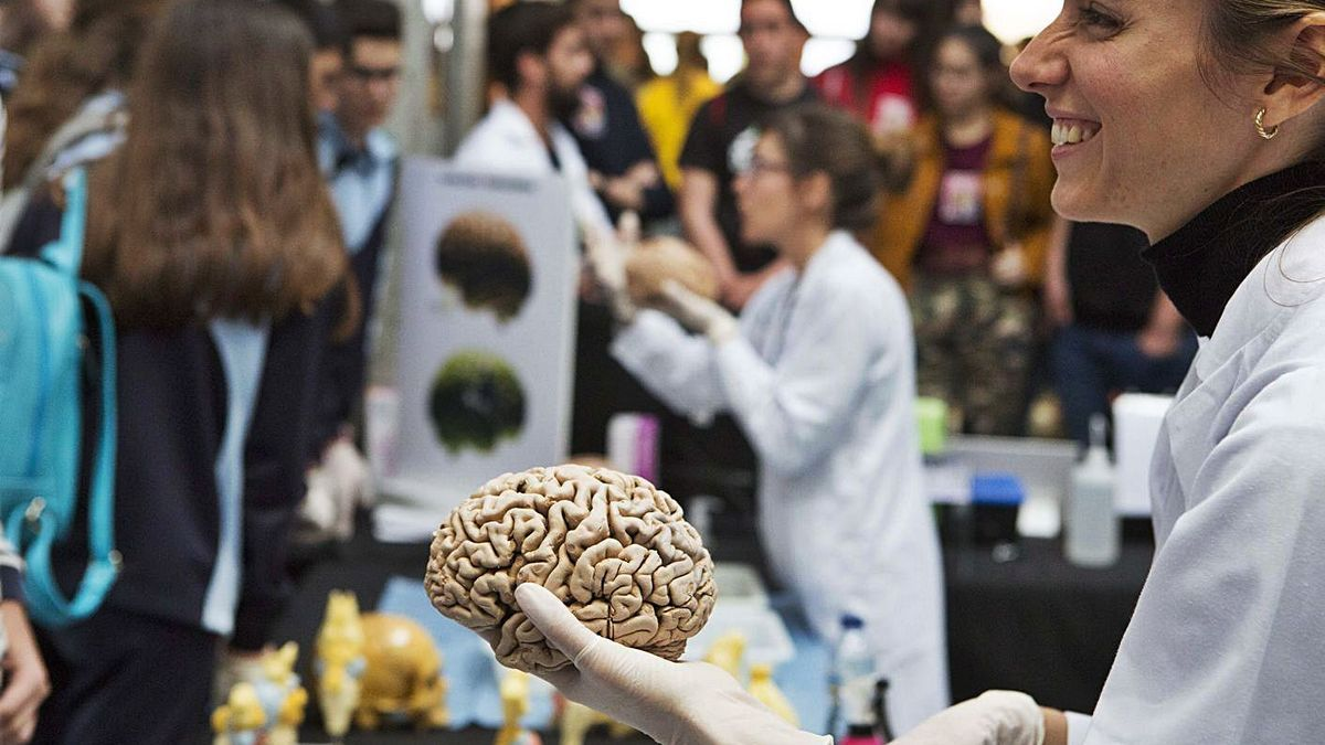 The Institute of Neurosciences of the UMH of Elche, in a week of talent search.  |