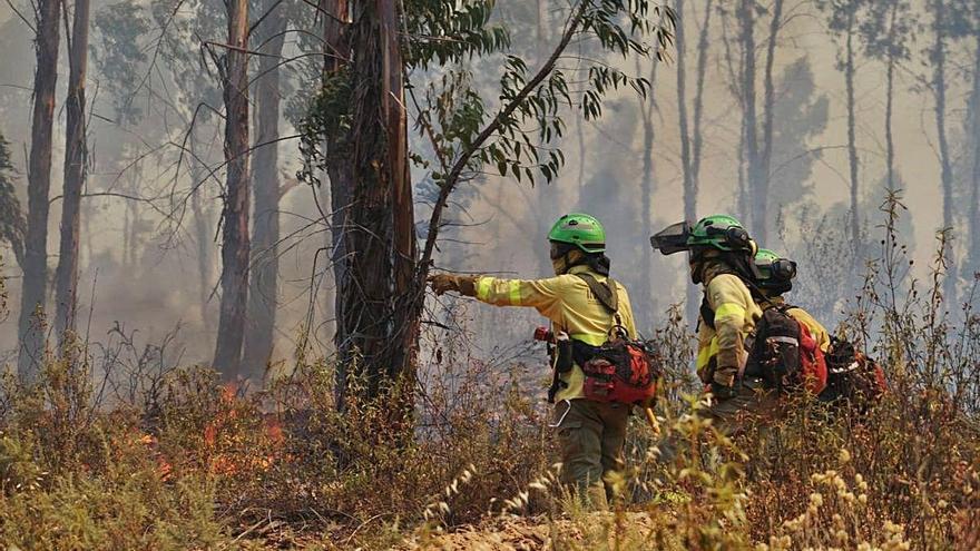 Estabilitzat el foc de Huelva després de cremar 12.000 hectàrees