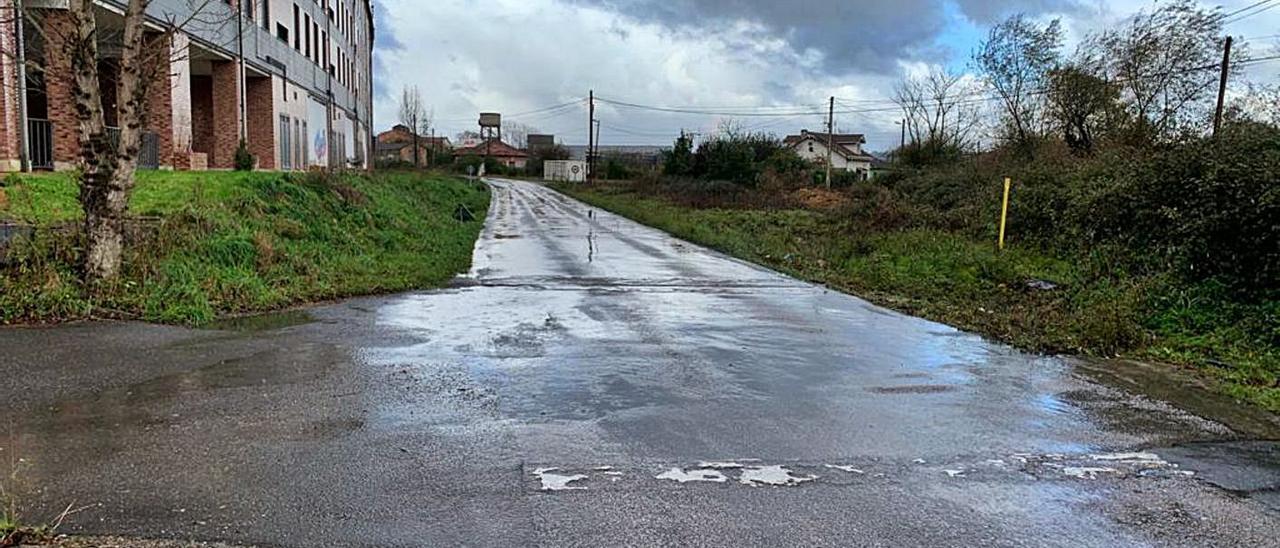 Estado actual de la avenida Les Bellotines donde se implantará Lidl.