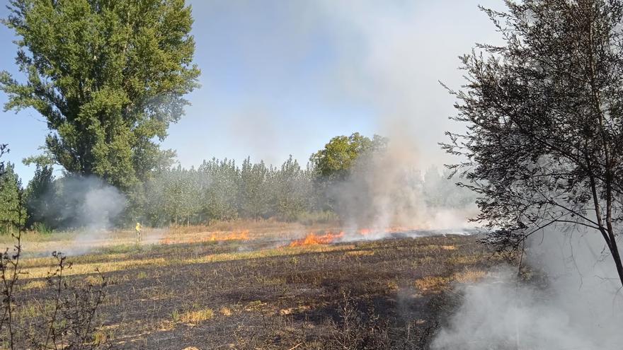 Extinguidos dos incendios en Grijalba y Santa Cristina