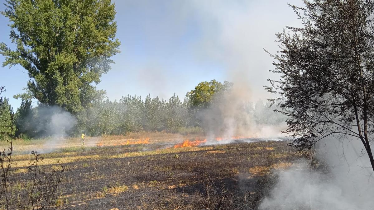 Incendio en la comarca de Benavente y Los Valles