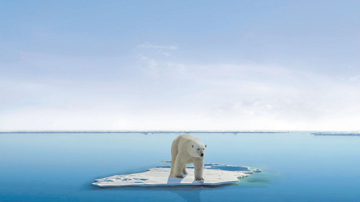 Imagen de un oso polar aislado sobre una masa de hielo.