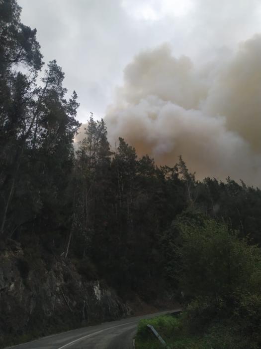 Alarma en Valdés por un incendio