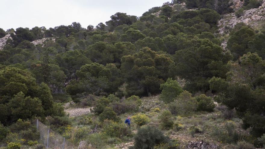 Cerrados los parques Serra Grossa y Monte Orgegia por riesgo de incendio