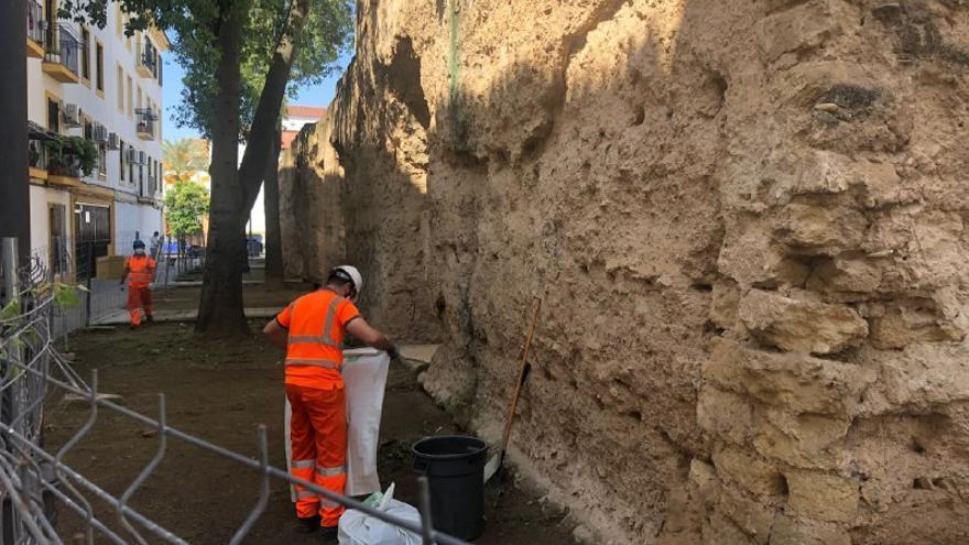 Sadeco inicia los trabajos de limpieza de la muralla en la zona de la Plaza del Gamo