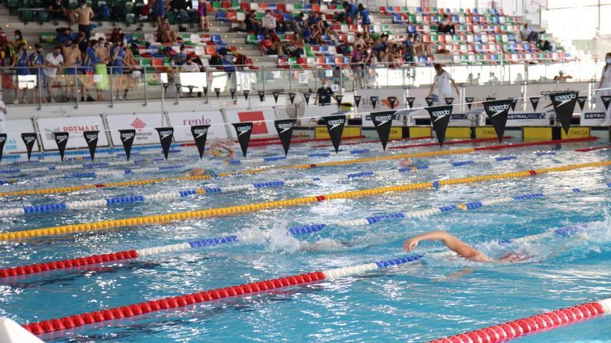 Las primeras mínimas para Tokio se decidirán en la piscina de Castelló