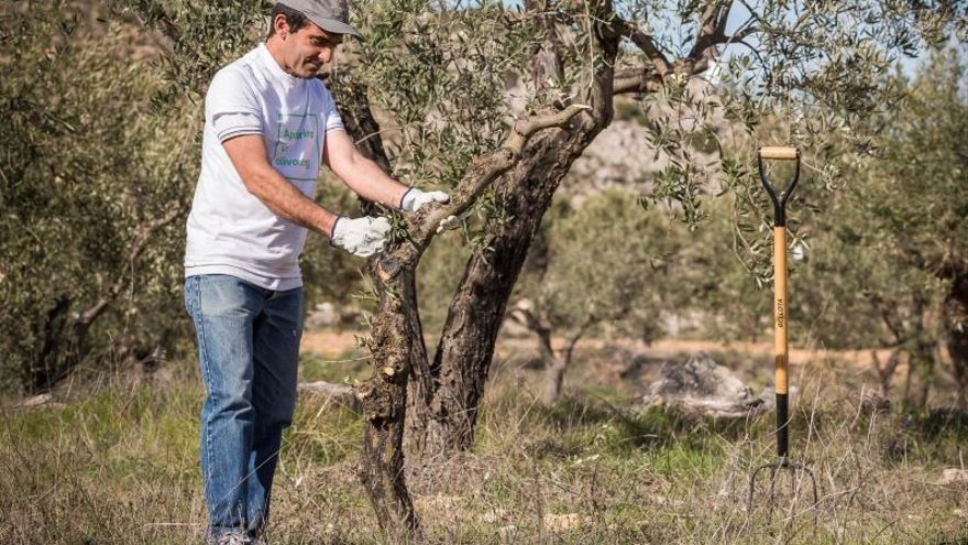 El emprendimiento verde, fuente de empleo en el Aragón rural