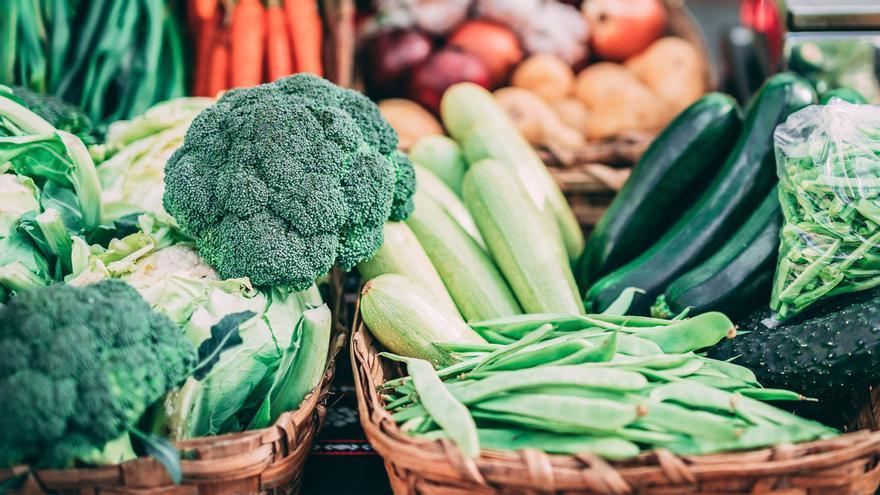 Verduras beneficiosas para nuestras mascotas