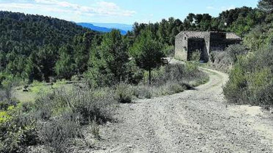 Castellolí invertirà prop de 70.000 euros en el manteniment de camins forestals