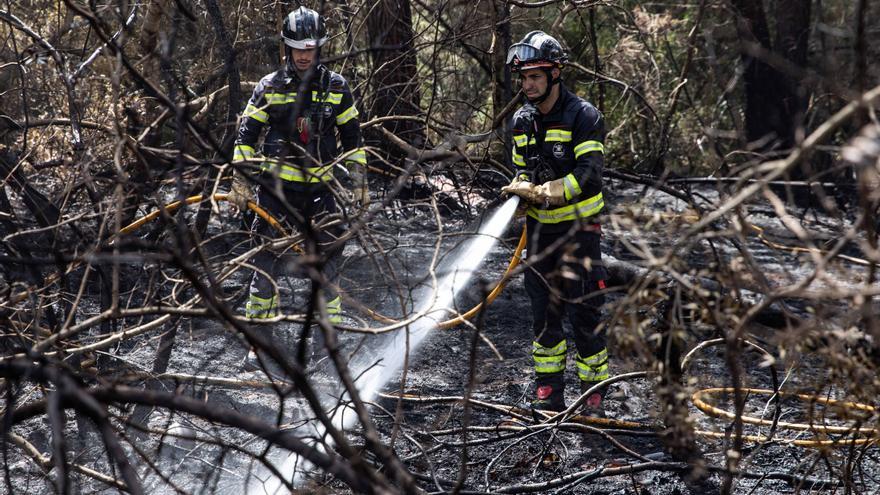 Los bomberos de Ibiza sofocan un incendio forestal