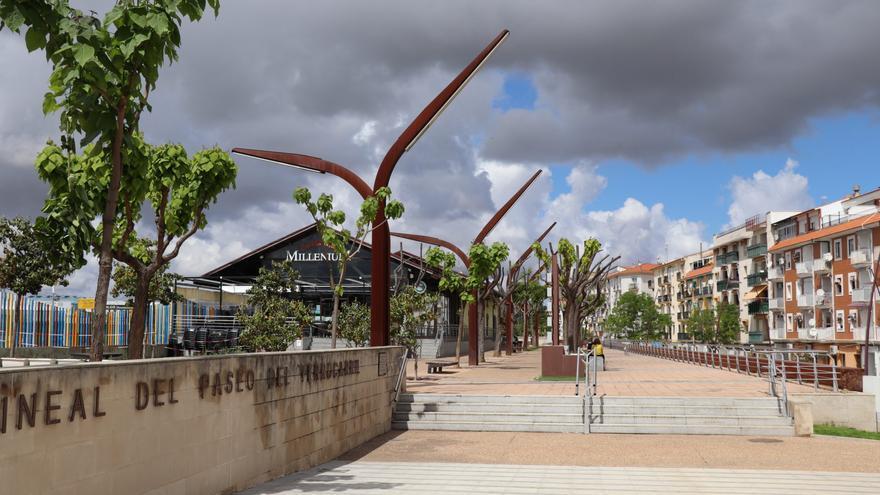 Plantan 1.232 árboles para mejorar las zonas verdes de Villanueva