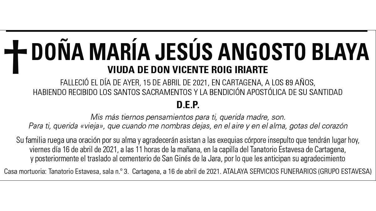 Dª María Jesús Angosto Blaya