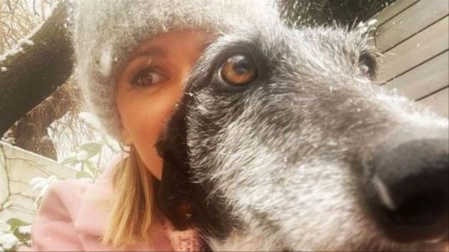 Susanna Griso sigue con su vida ante la angustiosa espera de que aparezca su perrita
