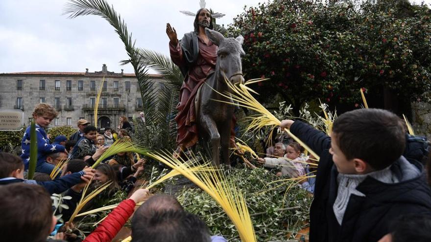 """Miles de pontevedreses enarbolan sus palmas y ramos en la tradicional procesión de """"La Burrita"""""""