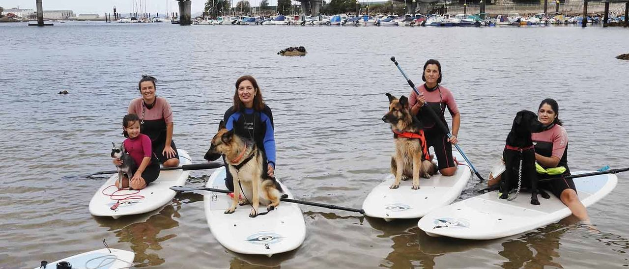 Clase de paddle surf con perros, en la Playa de Agro en Bouzas.