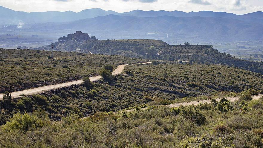 Moixent, Vallada, Montesa y la Font se unen contra el proyecto solar