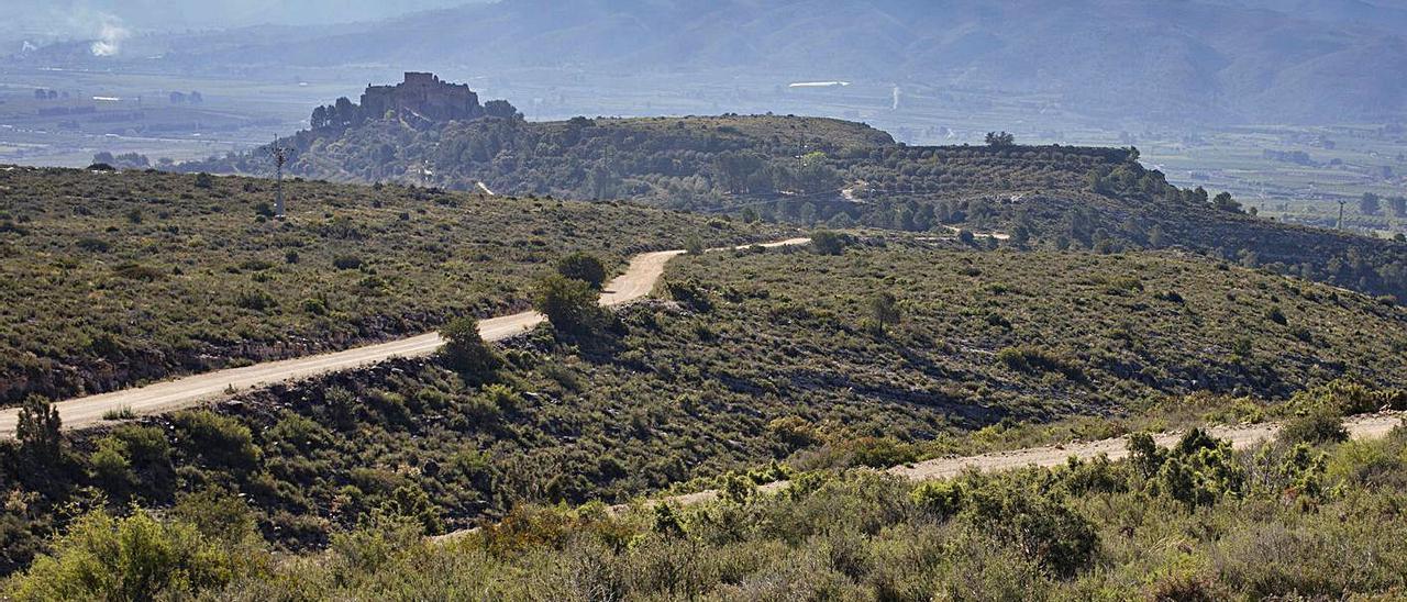 Vista posterior del Castillo de Montesa desde la ubicación de la granja solar prevista en su término | PERALES IBORRA