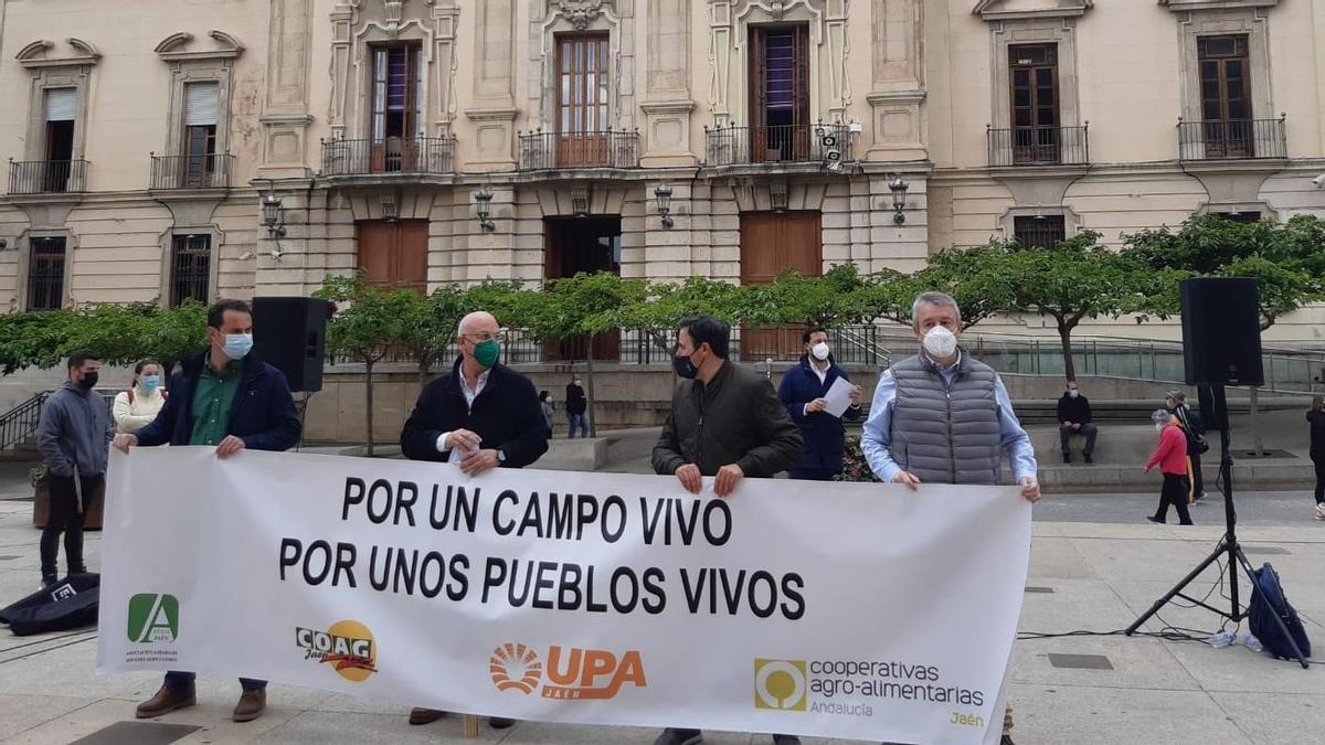 Responsables de las organizaciones agrarias, en la concentración celebrada en la Plaza de Santa María en Jaén.