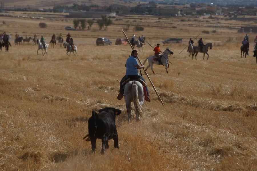 Fiestas en Zamora: Espante en Pereruela