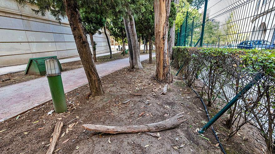 El parque de l'Aigüera de Benidorm: un pulmón verde a pedazos y con desperfectos
