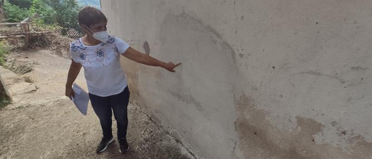 Yolanda Otero señala a una de las paredes agrietadas por la filtración de agua.  Yolanda Otero y Gabriel Álvarez, ante un corrimiento de tierras en el jardín de la primera. | A. Velasco