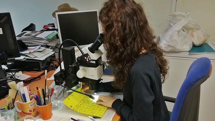 Las científicas malagueñas reivindican igualdad
