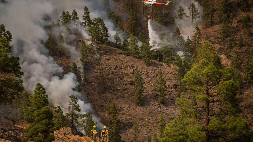 El fuego afecta a más de 3.300 hectáreas del pinar de Arico