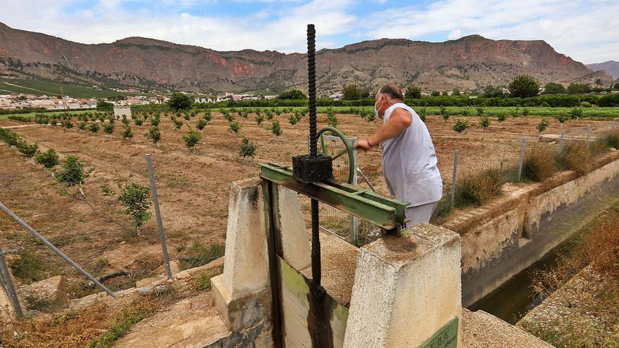 La batalla por el agua ningunea a miles de agricultores de la huerta tradicional de la Vega Baja