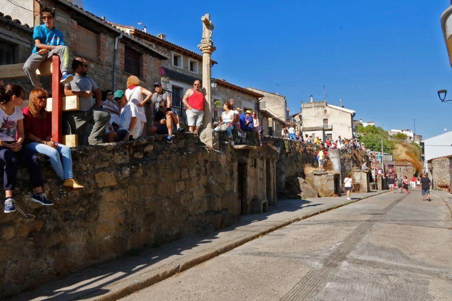 Fiestas en Zamora: Último encierro en Fermoselle
