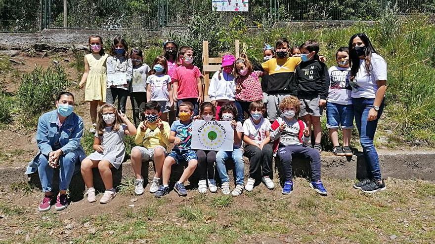 Un carballo por el Día del Medio Ambiente en el CEIP Chancelas