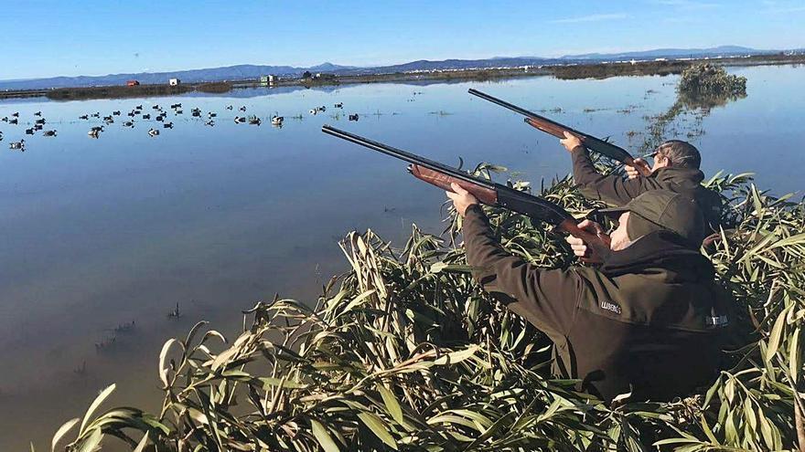 La campaña de caza de patos ha sido atípica por la Covid pero no mala