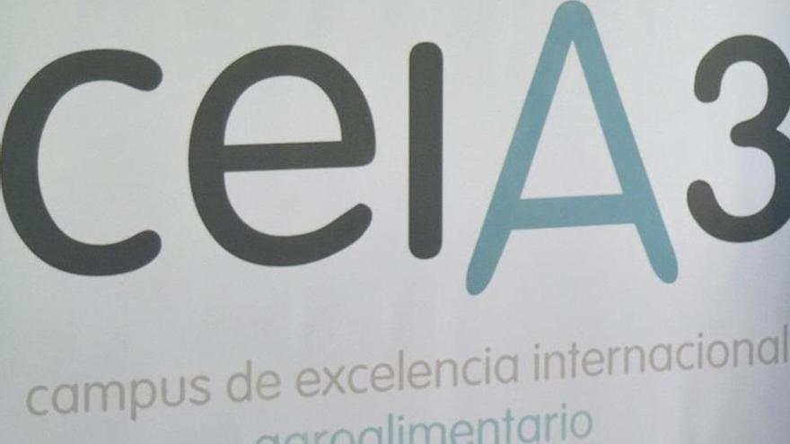 Concurso de proyectos de empresa 'Emilio Botín'