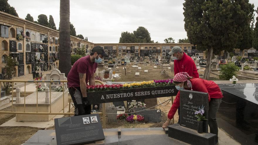 Las imágenes de la exhumación de la fosa 114 de Paterna, la de la Cultura