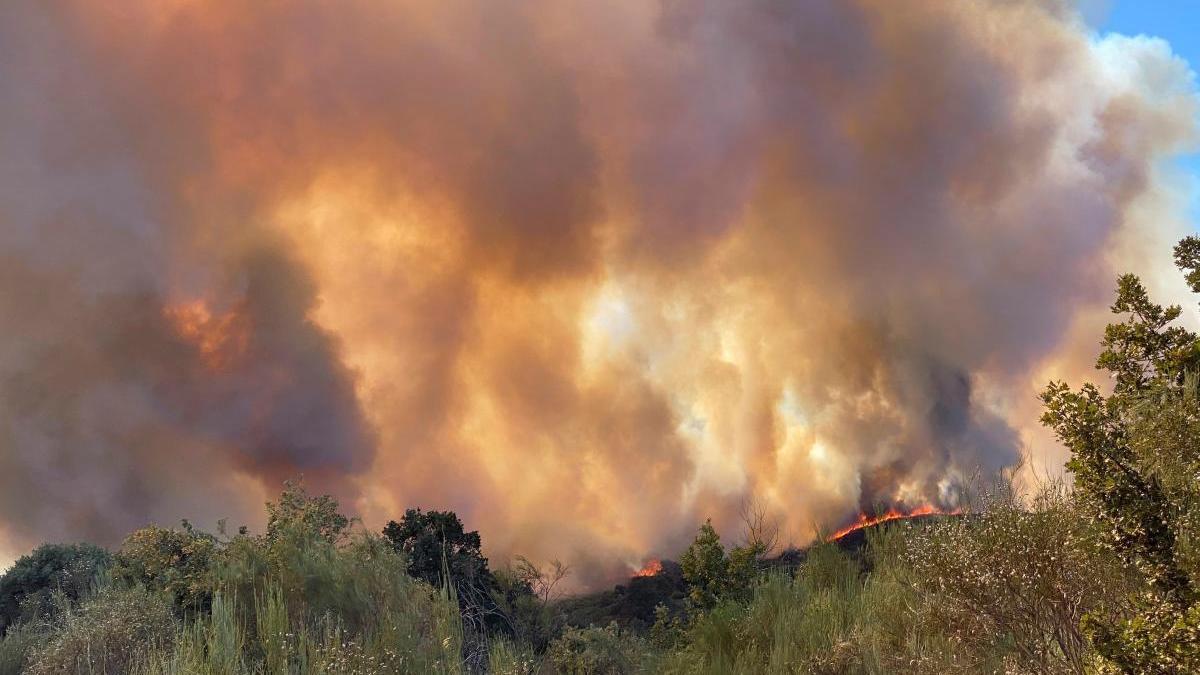 Incendio en Monterrei. // Efe / Sxenick