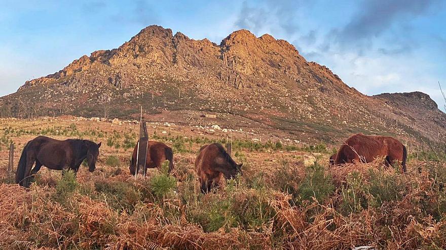 Otro parque eólico con 8 aerogeneradores ronda la cara sur del Monte Galiñeiro