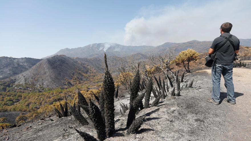 """""""Leve mejoría"""" en la extinción del incendio de Sierra Bermeja, que ya afecta a 6.000 hectáreas"""