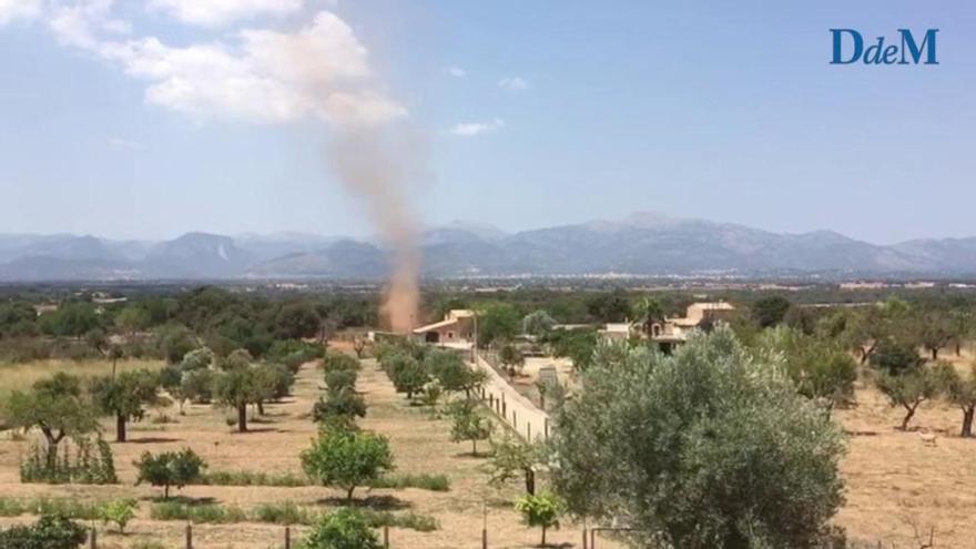 Wie im Wilden Westen: Windhosen fegen über die Ebene von Mallorca