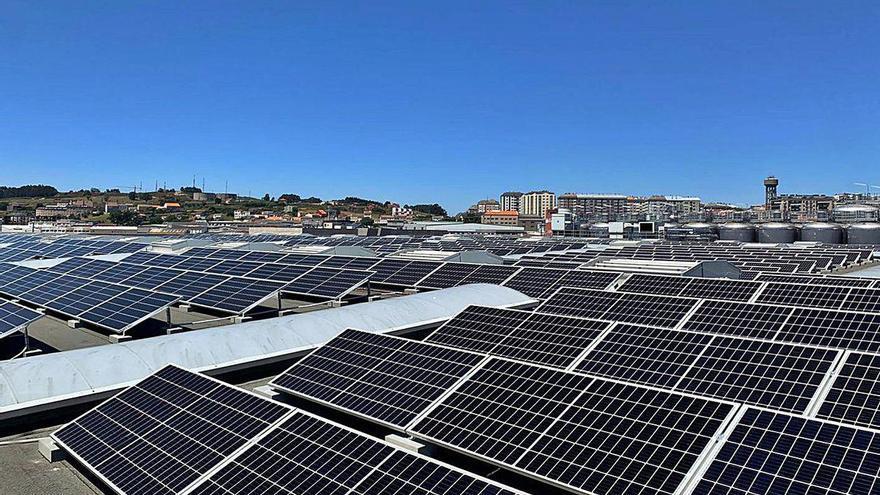 Estrella Galicia activa 977 paneles solares en su fábrica de A Coruña