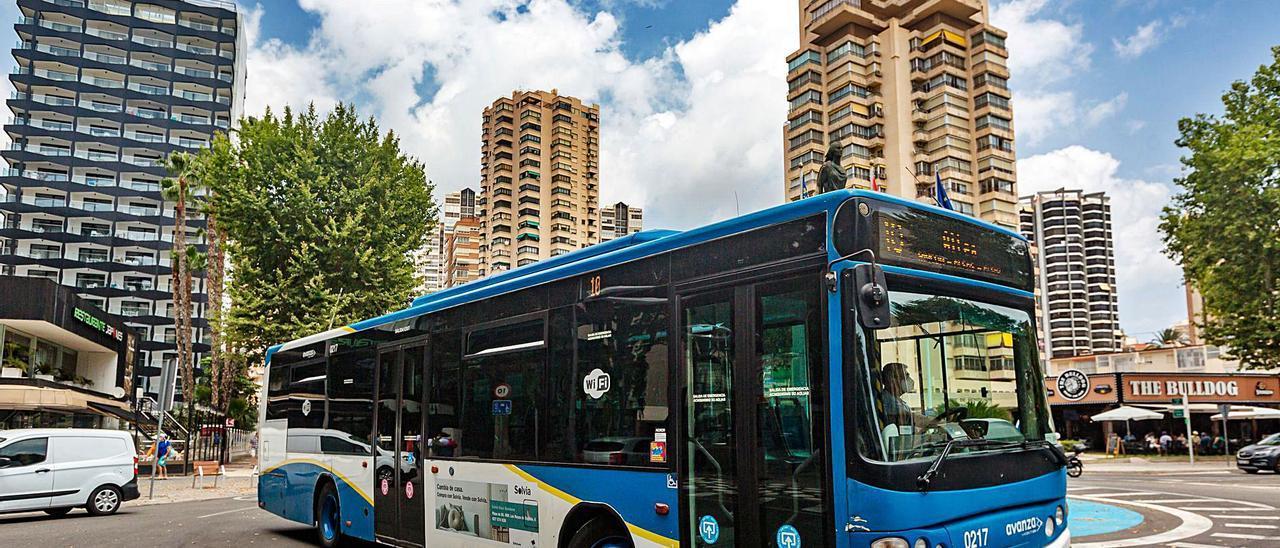 Un autobús urbano recorre de unas de las principales avenidas de Benidorm.  