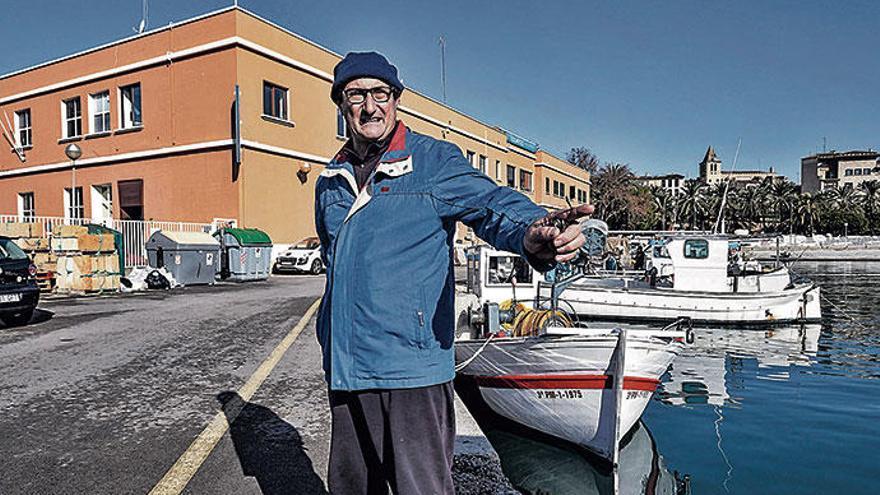 Delfinangriffe und Thunfischplage: die Sorgen der Fischer von Mallorca