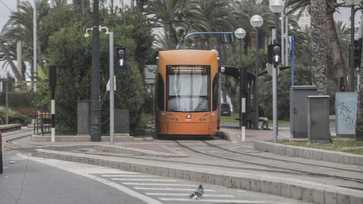 TRAM d'Alacant registra un descenso del 50 % de sus viajeros en marzo debido a la crisis sanitaria