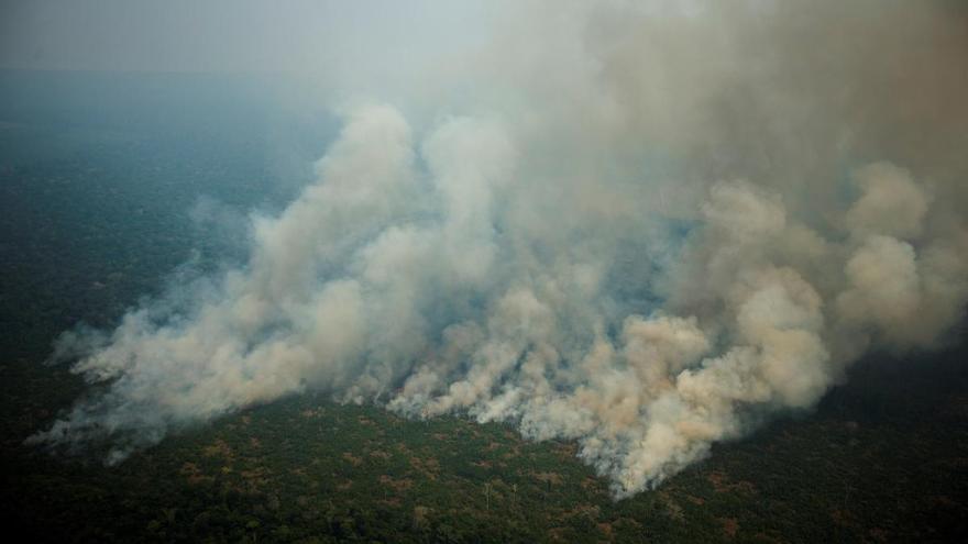 Las alertas de deforestación en la Amazonía brasileña suben 25 % en seis meses
