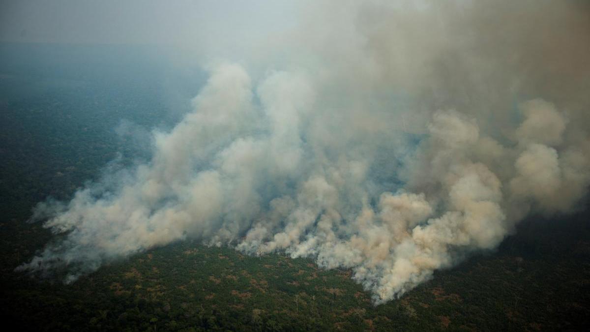 Varias columnas de humo sobre la selva amazónica de Porto Velho, Rondonia (Brasil)