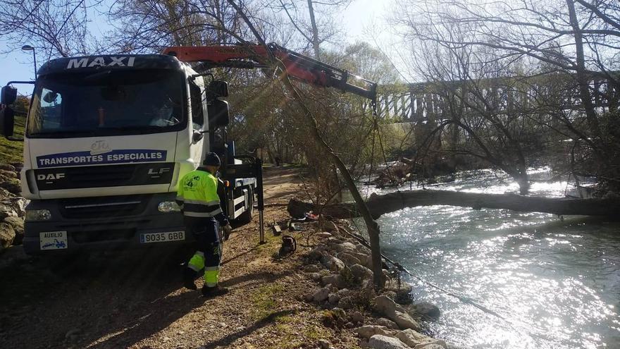 Zamora inicia la limpieza del cauce del Duero