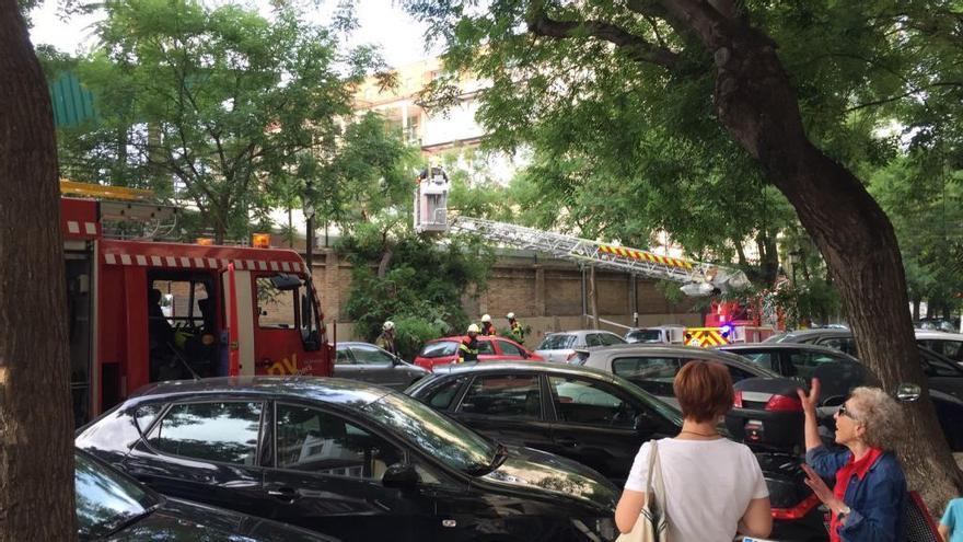 Un árbol cae sobre la valla de un colegio en la calle Calixto III