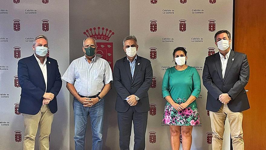 El Cabildo de La Gomera y farmacéuticos abordan nuevos espacios de cooperación en la isla