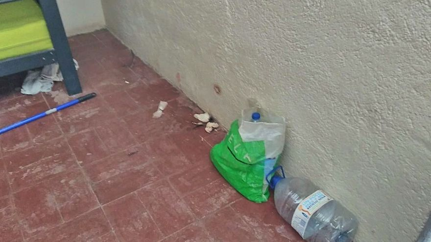 Los montañeros de Tenerife denuncian basura en el Refugio dos meses después de limpiarlo