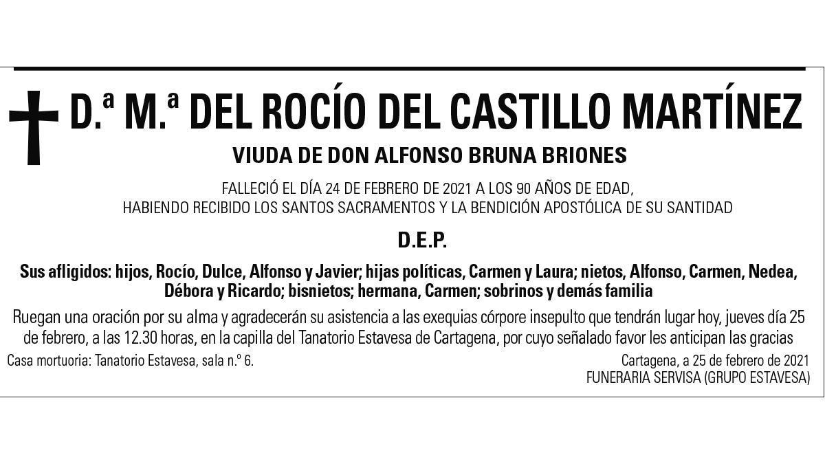 Dª María del Rocío del Castillo Martínez