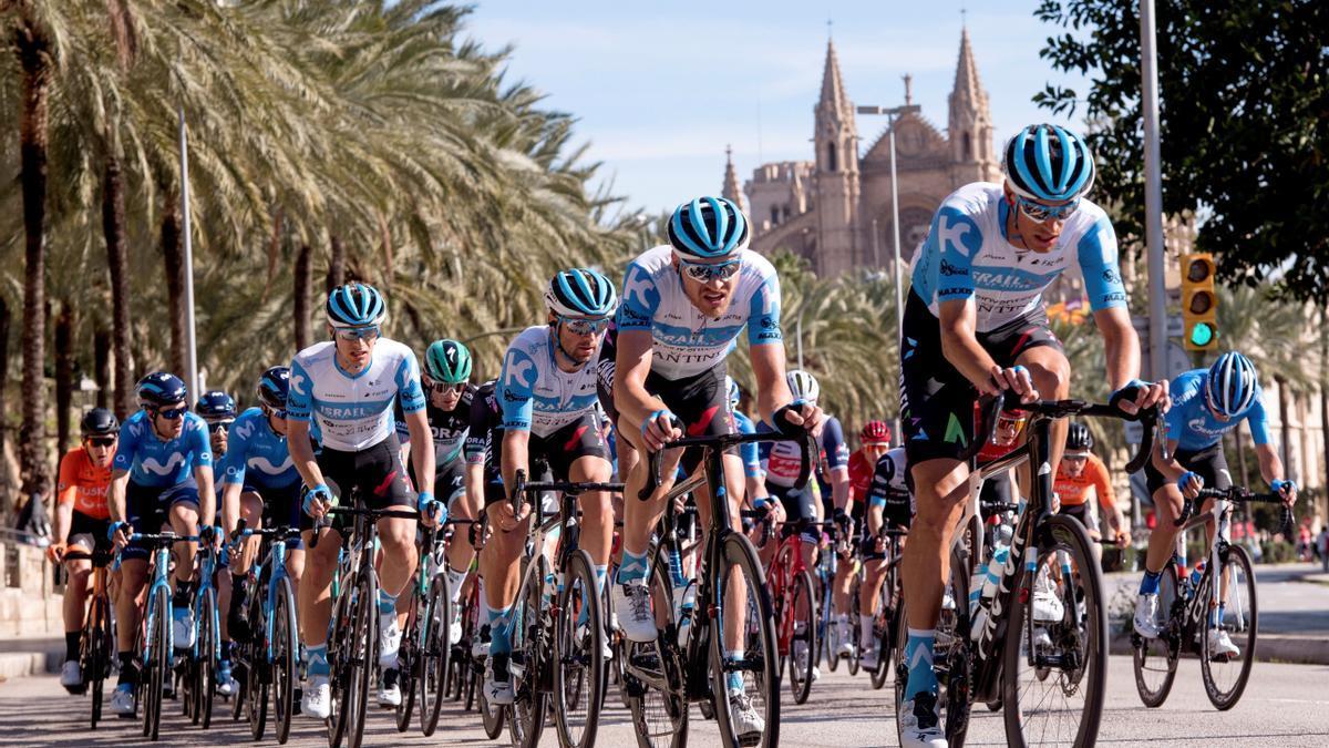 El pelotón ciclista durante la última prueba de la 3ª edición del Challenge de Mallorca